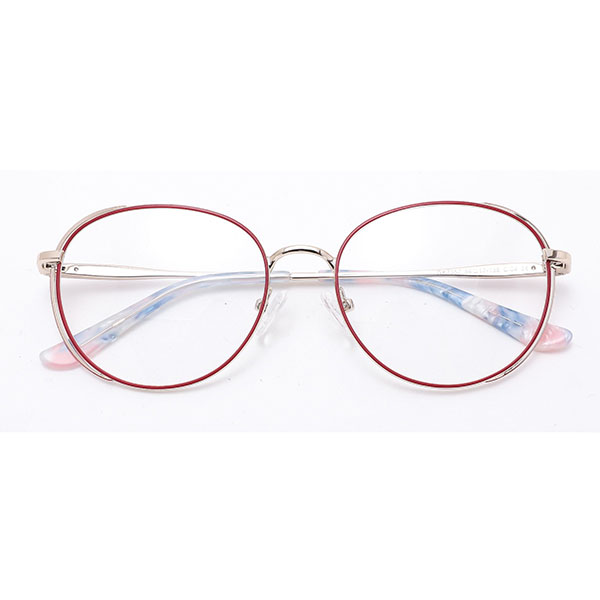 2021 New Designed Women Style Eyewear Frames